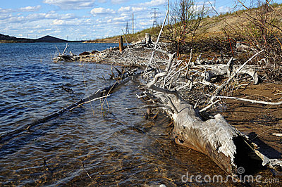 Coast of lake. Stock Photo