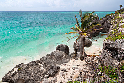 Coast of Tulum in Mexico