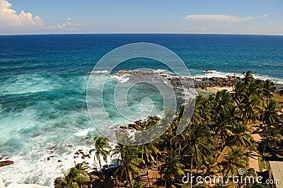 Coastal aerial view