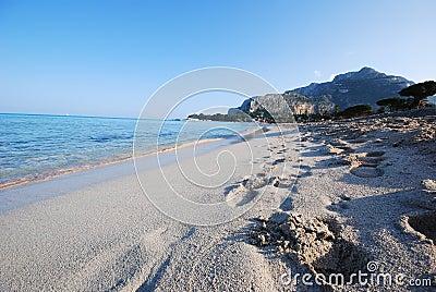 Coastal Beach - Sicily