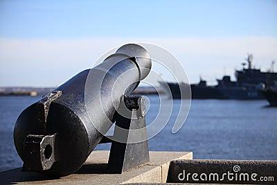 Coastal cannon