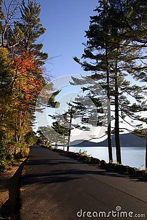 Free Coastal Road - Maine Royalty Free Stock Image - 1357896