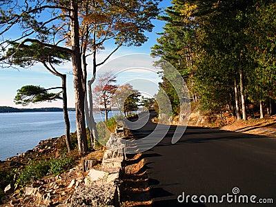Coastal Road - Maine