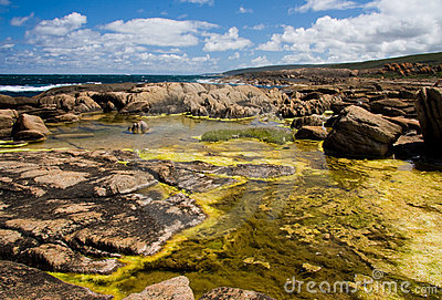 Coastal rock pools