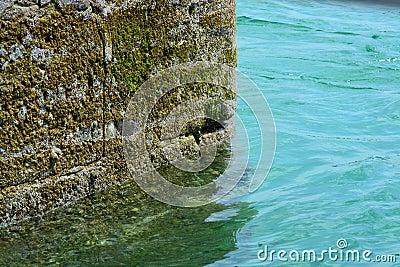 Coastal wall