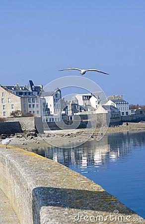 Coastline in brittany