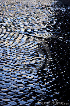 Free Cobbled Street After Rain Royalty Free Stock Photos - 21804778