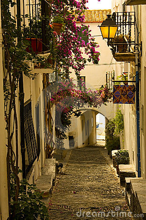 Cobbled street in Spain