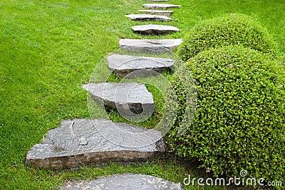 Cobblestone pathway in garden