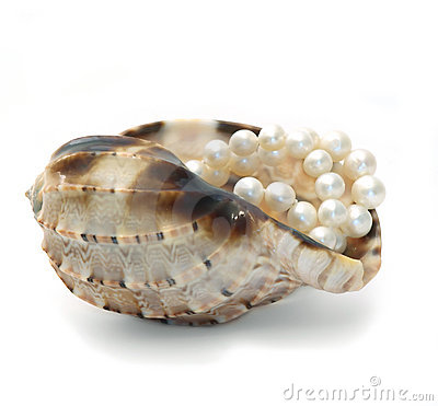 Free Cockleshell With White Pearls Royalty Free Stock Photos - 12214228