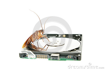 Cockroach climbing on hard disk drive