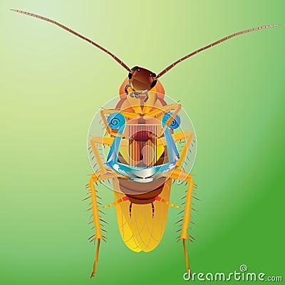 Cockroach play harp