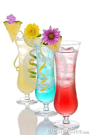 Cocktails margarita martini row