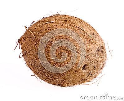 Cocnut closeup on white