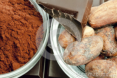 Cocoa beans, cocoa powder in bowls and chocolate bar