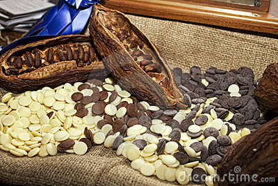 Cocoa beans with white and dark chocolate
