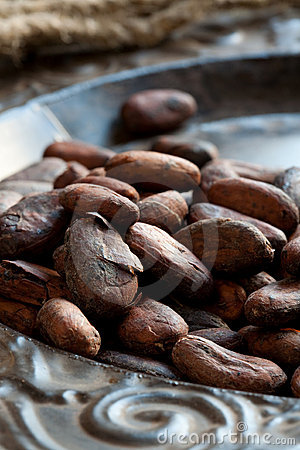 Free Cocoa (cacao) Beans Royalty Free Stock Images - 13431599