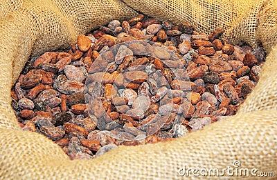 Cocoa ia a bag