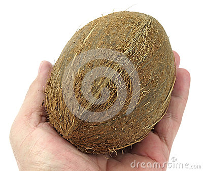 Coconut close-up in my hand