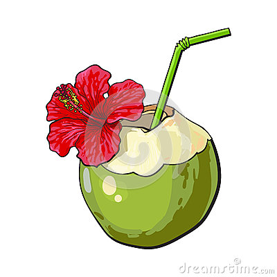 Free Coconut Cocktail, Drink Decorated With Hibiscus Flower, Summer Vacation Attribute Royalty Free Stock Photo - 85823005