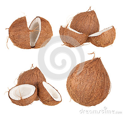 Free Coconut Fruit Stock Photography - 25307842
