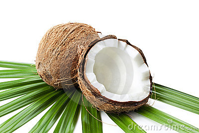 Coconut and half on palm tree leaf isolated