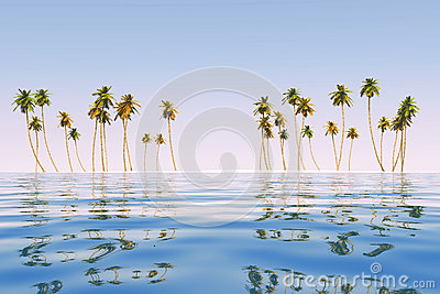 Coconut island at tropic sea