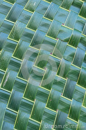 Free Coconut Leaf Weave Pattern. Royalty Free Stock Photography - 50884147