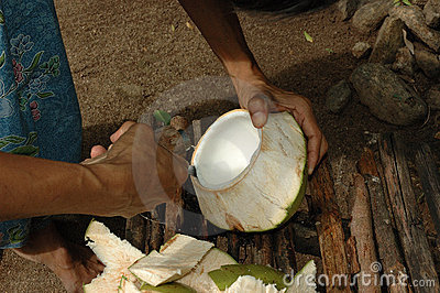Coconut Meat is Expertly Removed for a Snack