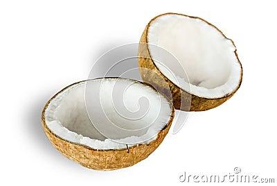 Coconut for oil preparing