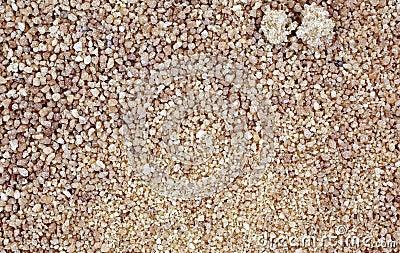 Coconut Palm Sugar Granules up Close