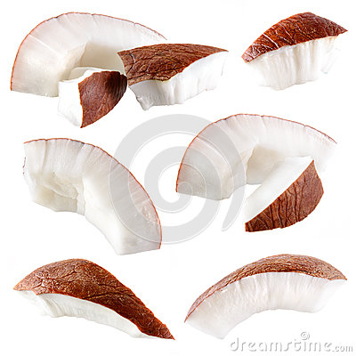 Coconut. Pieces isolated on white. Collection