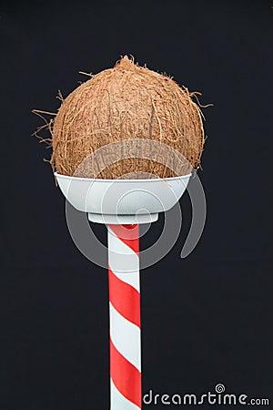 Free Coconut Shy. Stock Image - 121149831