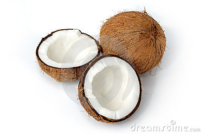 Coconut still-life isolated
