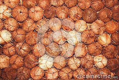 Coconut texture background