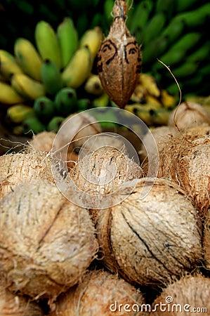 Coconuts and bananas