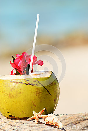 Coconuts on the beach