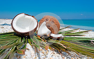 Coconuts and beach