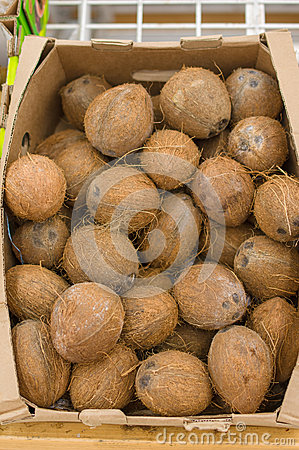 Coconuts in boxes in supermarket