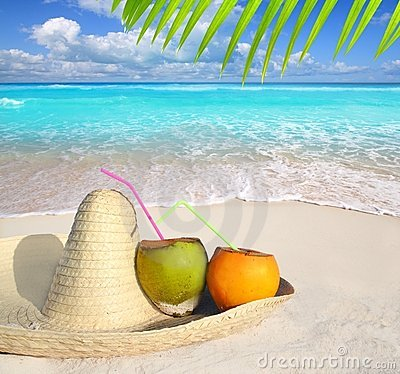Coconuts in Caribbean beach on mexico sombrero hat