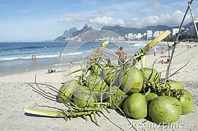 Coconuts Ipanema Beach Rio de Janeiro Brazil