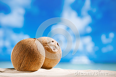 Coconuts with ocean , beach and seascape