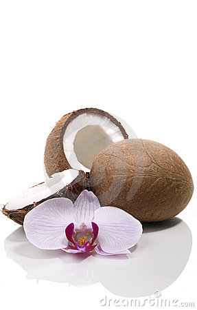 Coconuts and orchid