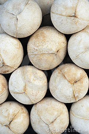 Coconuts pattern