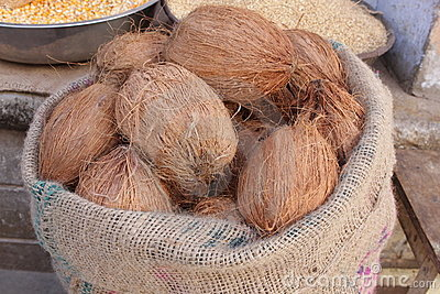 Coconuts in a sack
