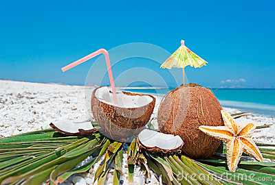 Coconuts, sea star and palm