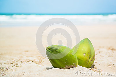 Coconuts on a tropical beach