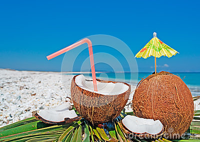 Coconuts and umbrella