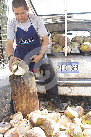 Coconuts vendor Editorial Stock Image
