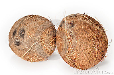 Coconuts on a white background